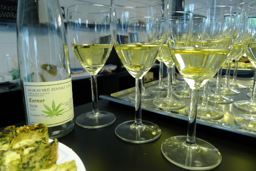 konopné víno